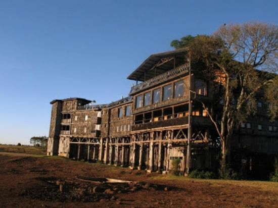 treetop lodge Kenya Africa