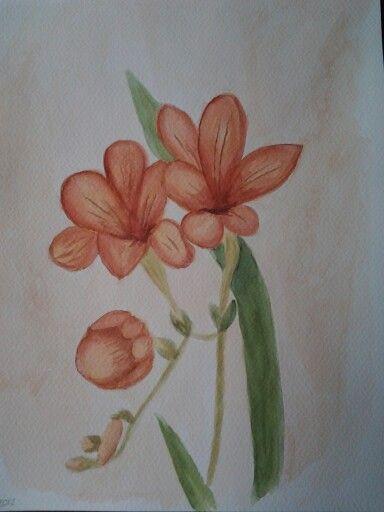 Flower september 2012