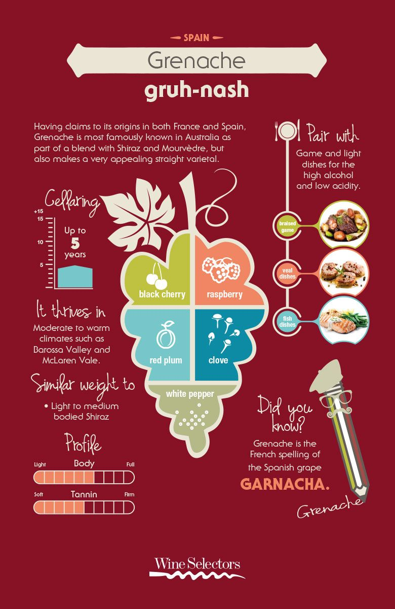 Grenache Red Wine Infographic Grenache Grenache Wine Wine Variety