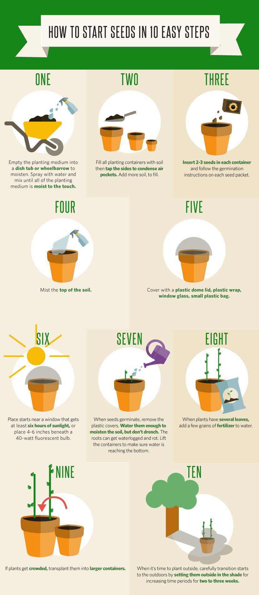 Your Garden After Winter | Pinterest | Seeds, Gardens and Vegetable ...