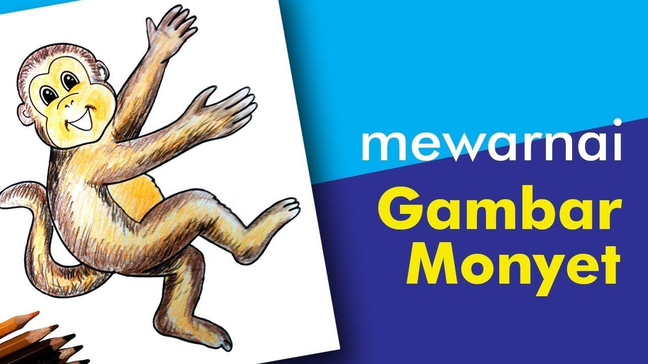 Mewarnai Monyet Menggunakan Pensil Warna Warna Belajar