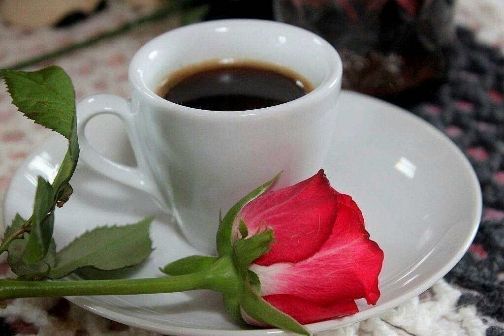 потолки картинка фото кофе для любимой нежная, мягкая, вкусная