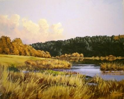 Dam in the Midlands Ted Hoefsloot