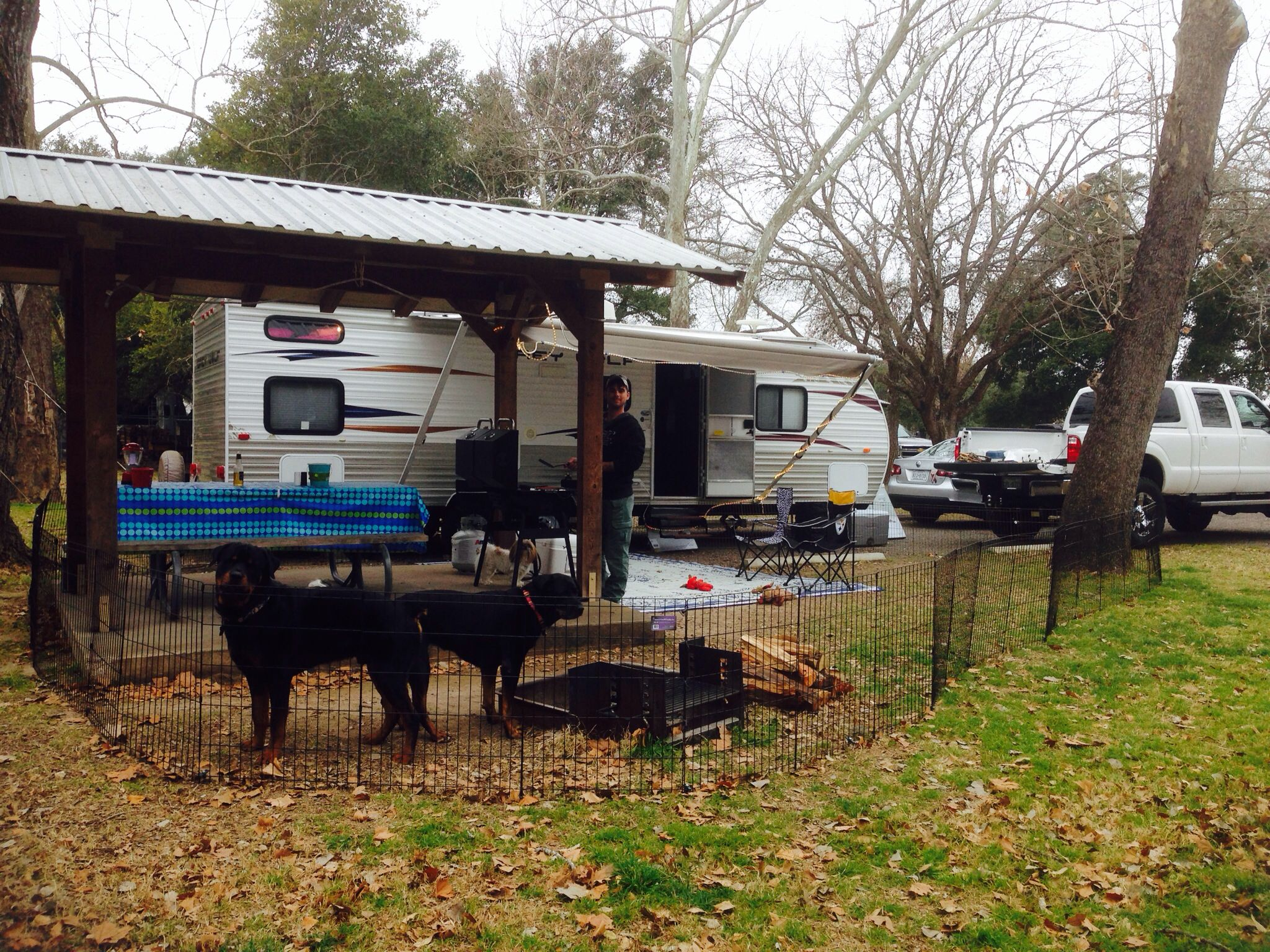 Fencing For Rvs : Camping rv dog fence my rottweilers are good and will