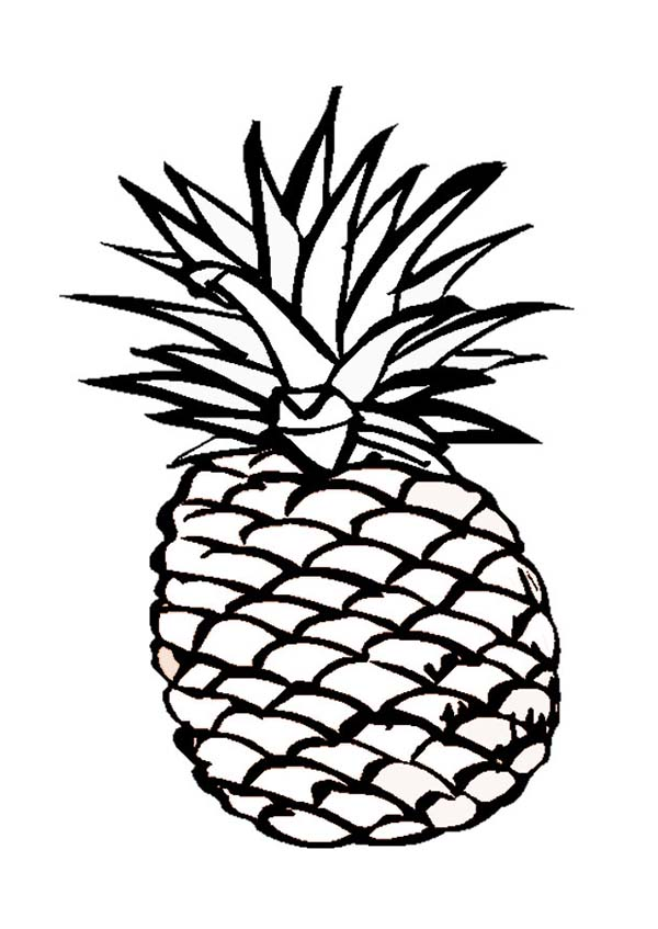 A Delicious Hawaiian Smooth Cayenne Pineapple Coloring Page Download Print Online Coloring Pages Fo In 2020 Pineapple Printable Fruit Coloring Pages Coloring Pages