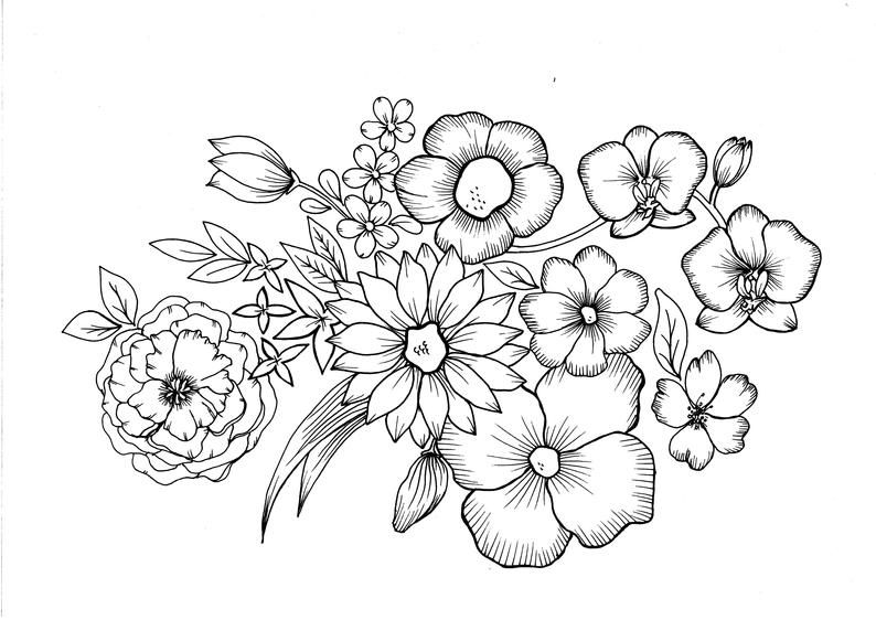 Flowers Pdf Coloring Page In 2021 Coloring Pages Flower Coloring Pages Flower Drawing