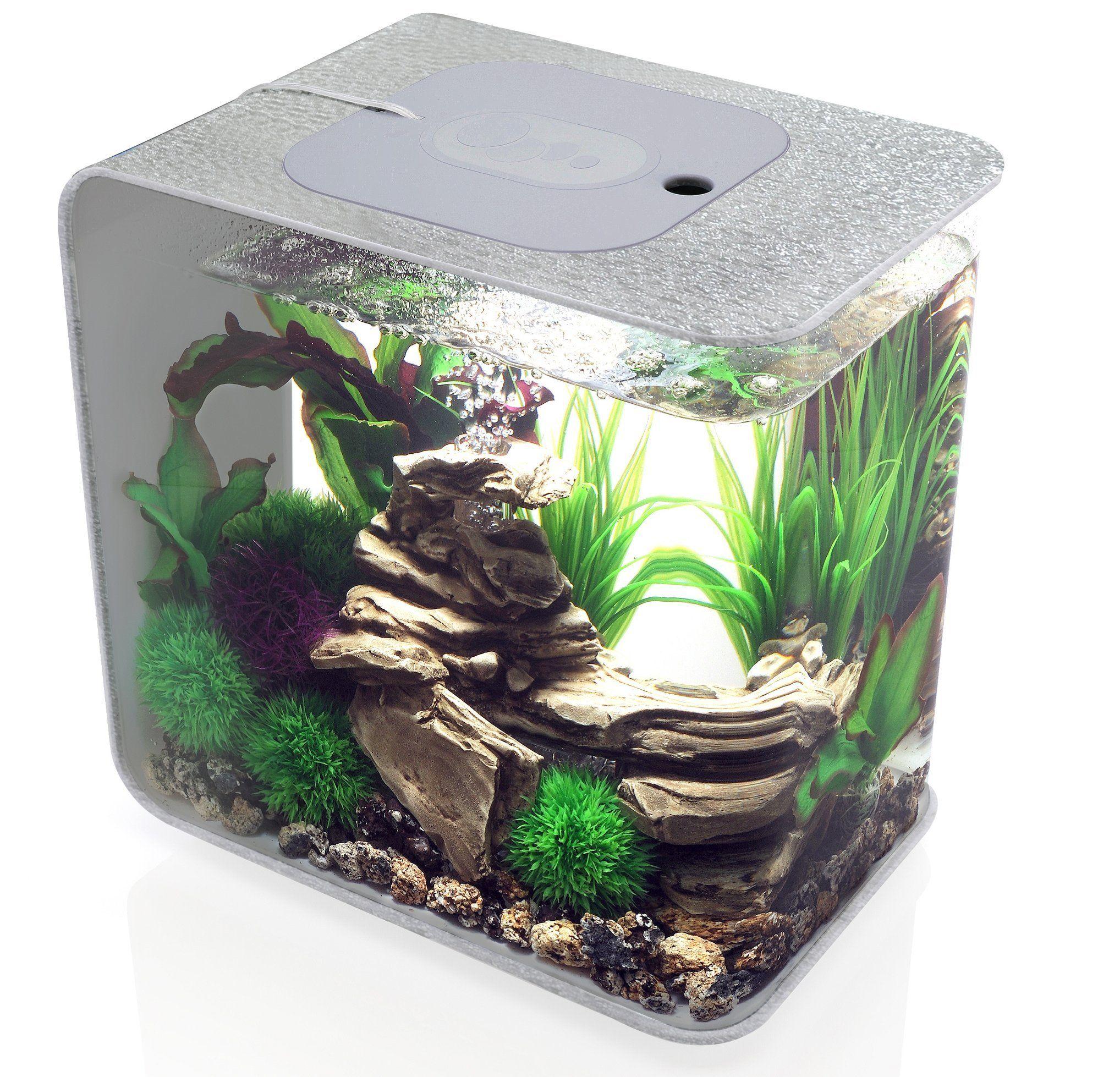 biOrb Flow Aquarium, 15 Litre, Silver, LED Light Amazon