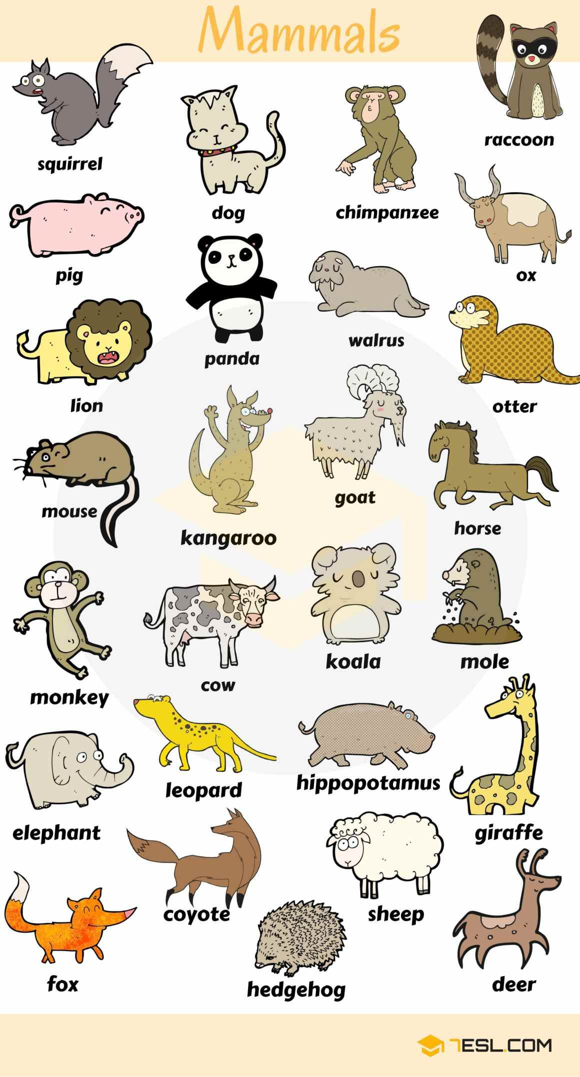Learn Animal Names In English Eslbuzz Learning English Animals Name In English English Vocabulary Learn English Vocabulary