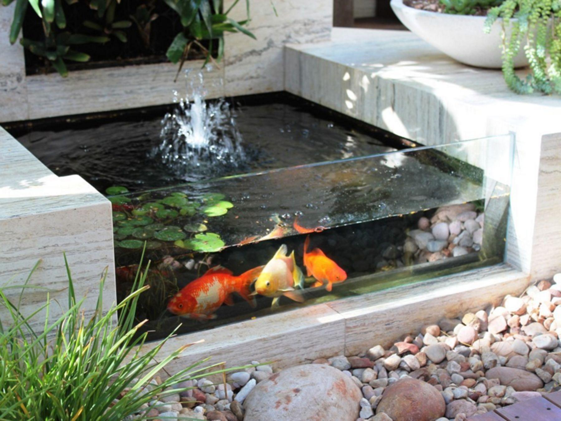 10 Minimalist Fish Pond Design Ideas