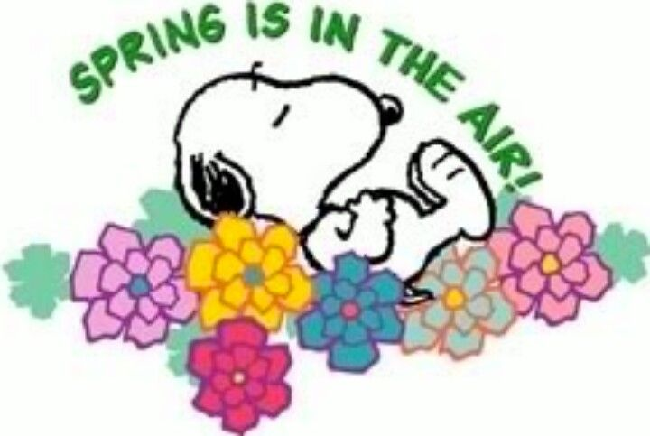 spring is in the air charlie brown snoopy the gang pinterest rh pinterest nz