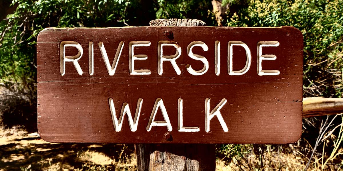 Riverside Walk In Zion National Park Habits Of A Travelling Archaeologist Riverside Walk National Parks Zion National Park