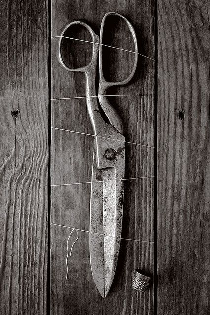 Scissors and Thread by thorburn, via Flickr