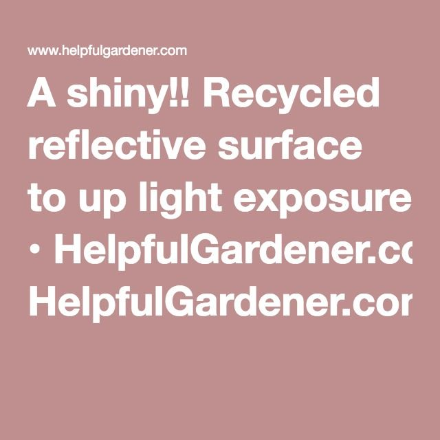 A shiny!! Recycled reflective surface to up light exposure • HelpfulGardener.com