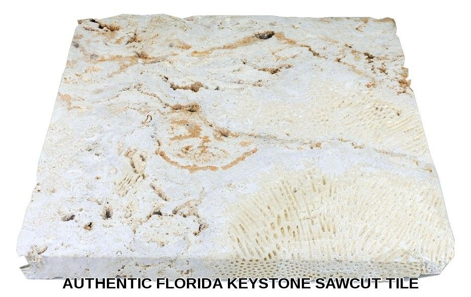 Authentic Florida Keystone Coquina Stone Coral Stone Tiles By