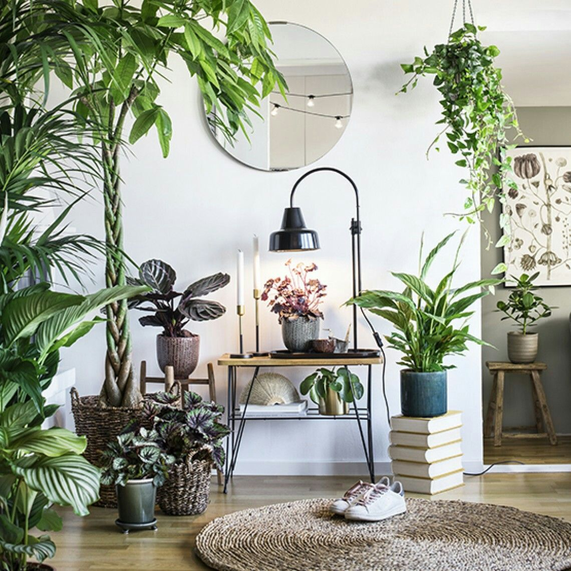 Boho interior | Plant Information | Pinterest | Interiors, Plants ...