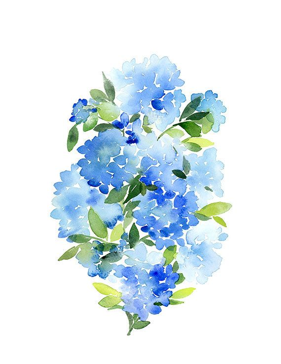 Handmade Watercolor Blue Hydrangea 8x10 Wall Art By Yaochengdesign