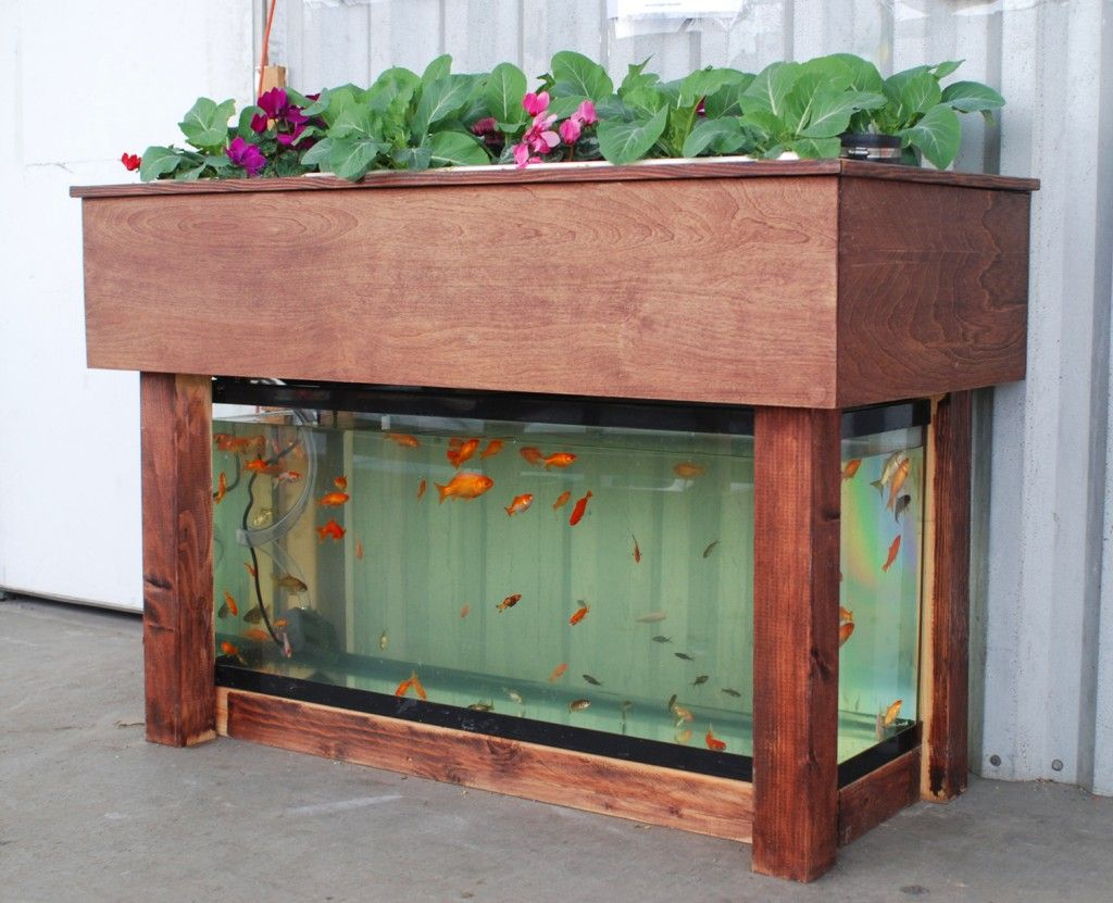 17 Best 1000 images about Aquaponics on Pinterest Gardens Recycled