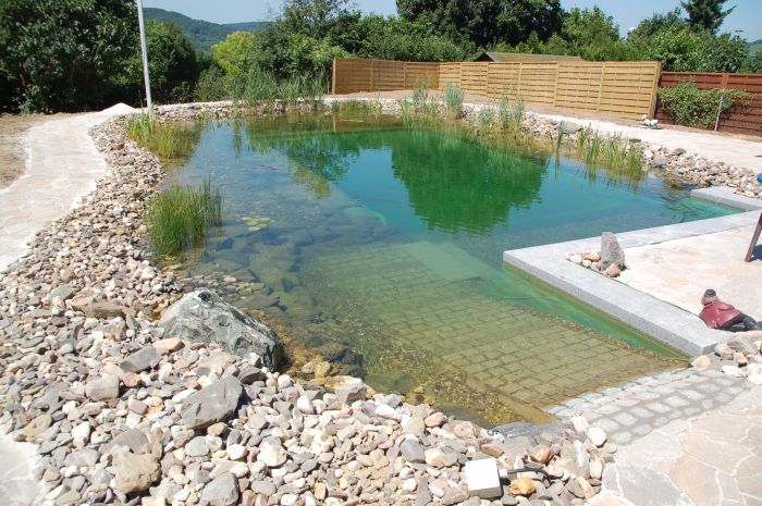 Schwimmteiche » Aufbau und Funktionsweise Teich und Garten - gartenanlagen mit teich