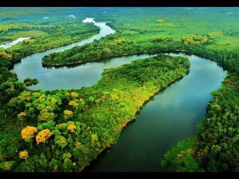 Caracteristicas De Los Peces Del Rio Amazonas Tvagro Por Juan Gonzalo Pantanal Pantanal Brasileiro Pantanal Matogrossense