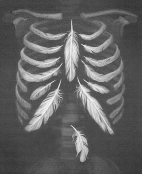 Feather-Bones-Skeleton-Fragile-Ribs-Rozaap