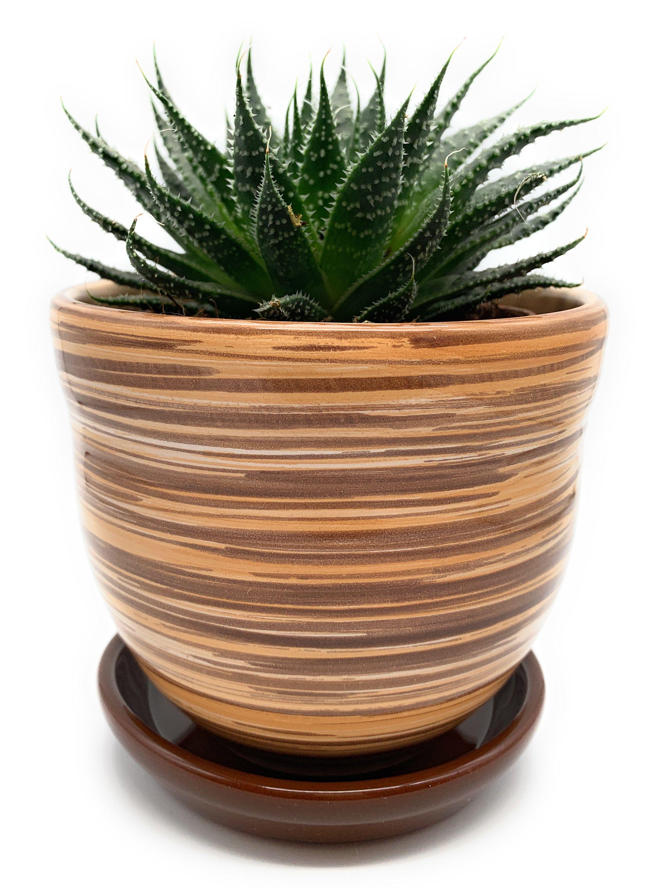 High End Ceramic Plant Pots Ceramic Plant Pots Ceramic Flowers