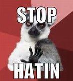 no sir lemur meme - Bing images