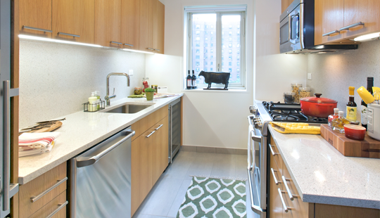 NYC Apartment.... LOVE IT! Rent in nyc, Apartment layout
