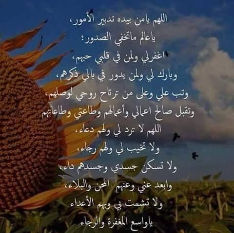 Pin By Amany Ghozlan On دعاء جميل Best Quotes Words Of Wisdom Words