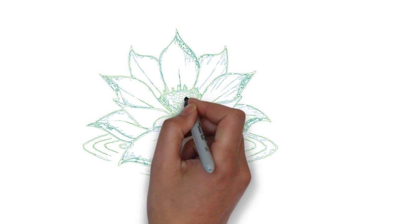 School drawing tutorial lotus how to draw lotus flower step by school drawing tutorial lotus how to draw lotus flower step by step izmirmasajfo