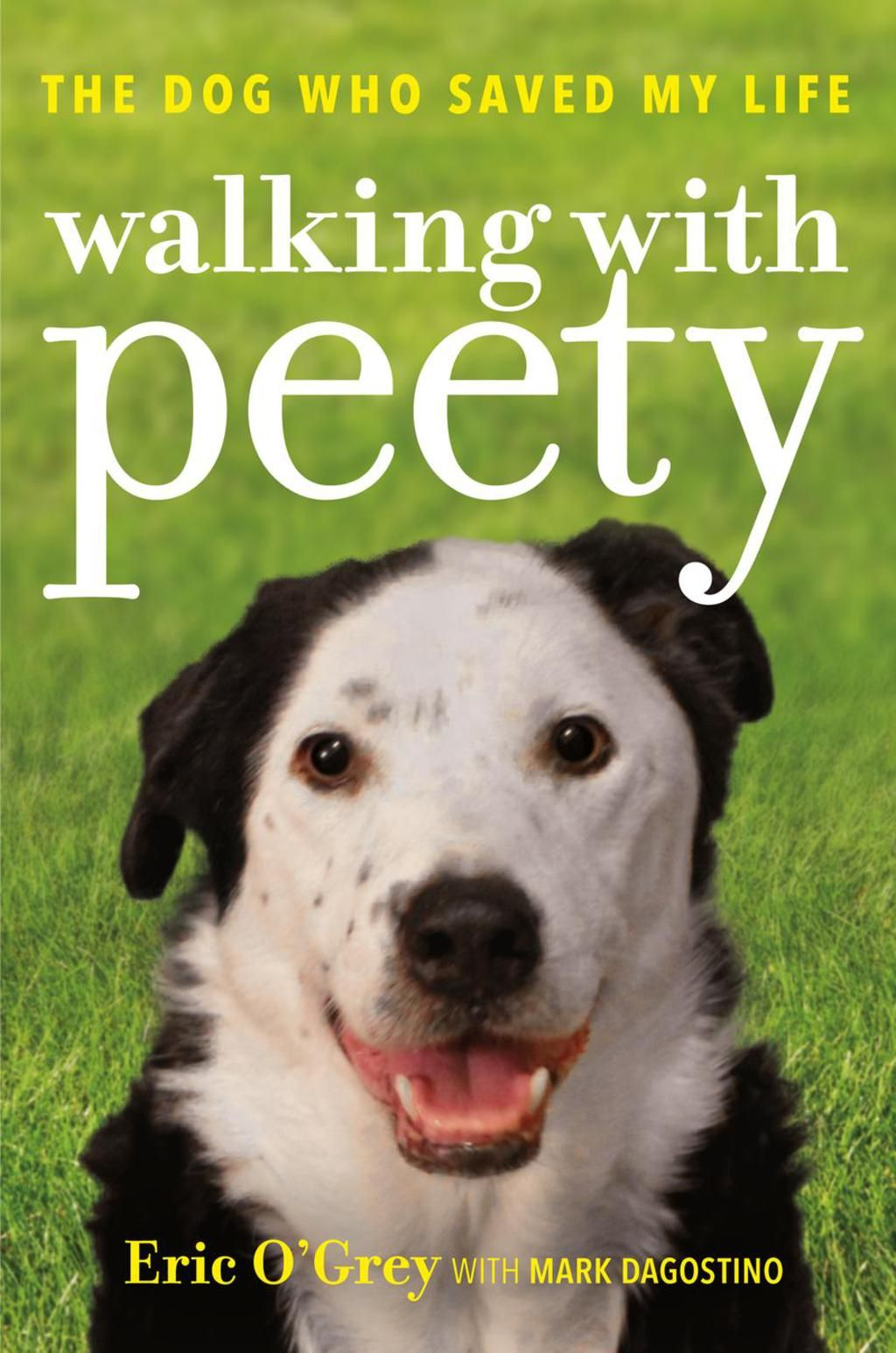 Walking with Peety The Dog Who Saved My Life (eBook