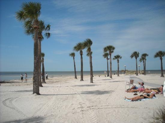 Pine Island Park Spring Hill Florida Sandy Beach Picture Of Weeki Wachee Tripadvisor