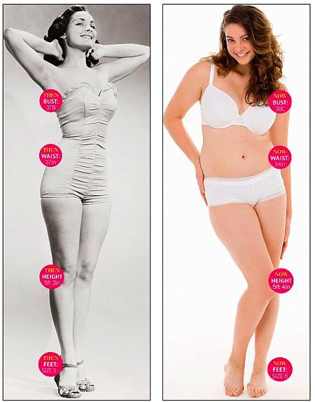 average body fat for women № 79557