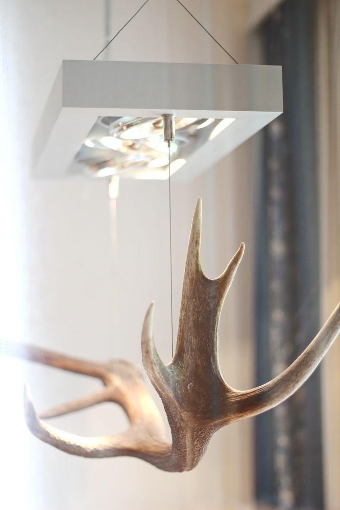 Das Rivus Lampe
