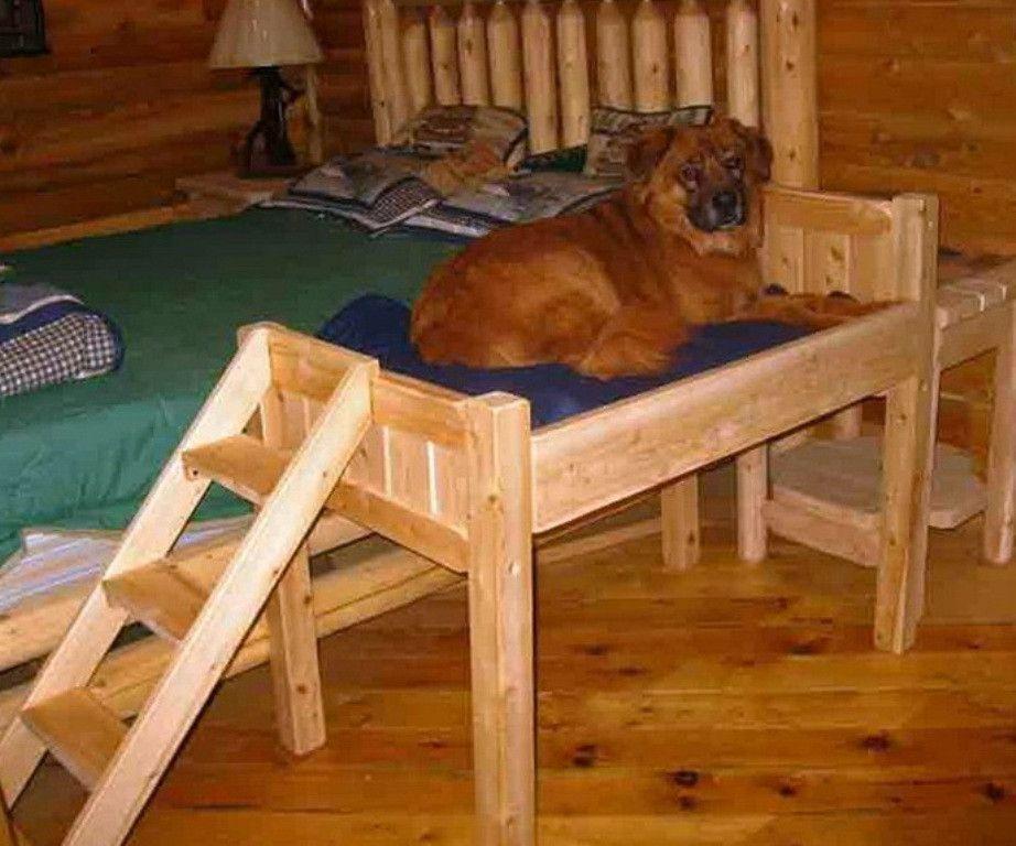 22 best diy dog platform elevated dog bed cool dog beds