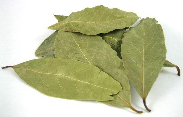 Osim što popravlja ukus raznim jelima lovorov list ima mnoga lekovita svojstva: podstiče dobro raspoloženje, reguliše probavu, smanjuje rizik od kardio...