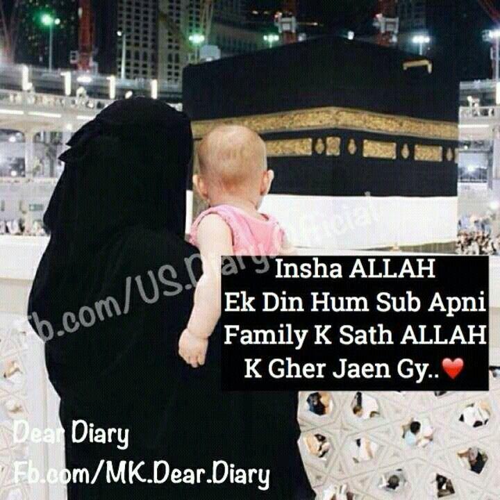 Insha allah In sha Allah Shyr