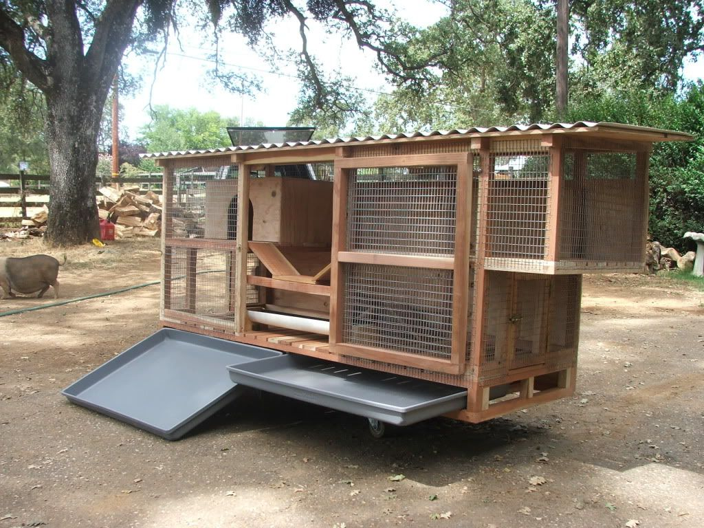 Giant super large rabbit cage copyright 2012 shawn ream for Design indoor rabbit cages