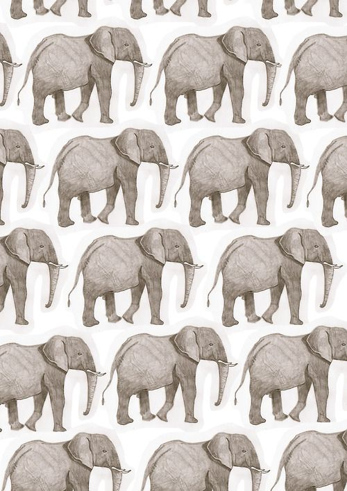 Pin de Wjing Wong en Pattern-pattern   Pinterest   Elefantes, Fondos ...