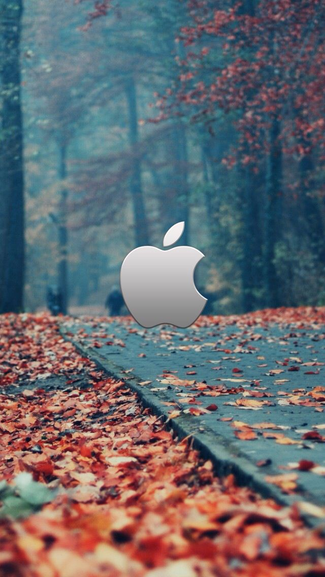 Fall Iphone 5 Wallpaper Apple Logo Wallpaper Iphone Apple Wallpaper Iphone Wallpaper Fall