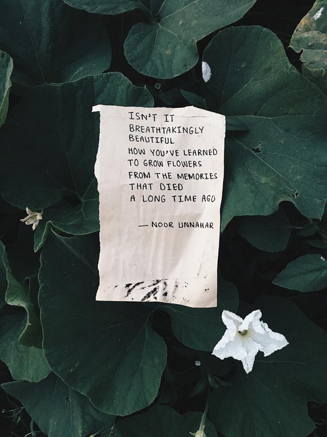 Aesthetic Self Love Quotes Tumblr