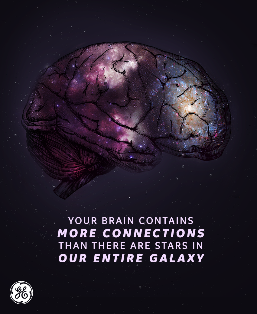 Science Facts Brain: Do You Know How Many Connections Are In Your Brain? The