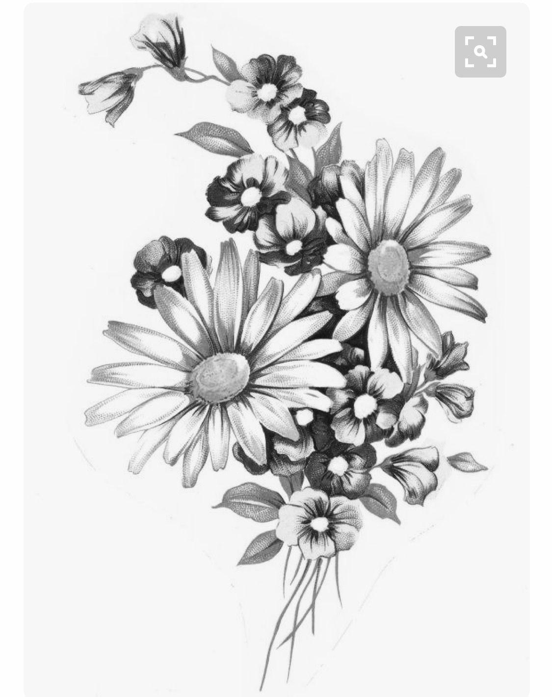 Pin by Trisha on Tattoo Wildflower tattoo, Daisy tattoo