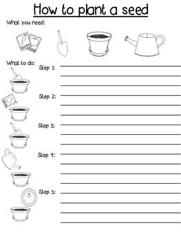 Procedure Writing Template Diffeiated How To Plant A Seed Teacherspayteachers