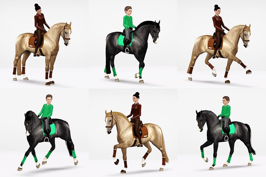 Dressage Training Posepack Raymond Equestrian Centre Sims Pets Sims Horses