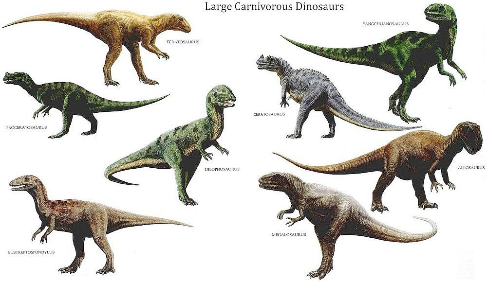Carnivorous Dinosaur S Dinosaur Wallpaper Dinosaur Pictures Prehistoric Animals
