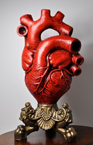 Anatomical Heart Vase Red Finish Want Pinterest