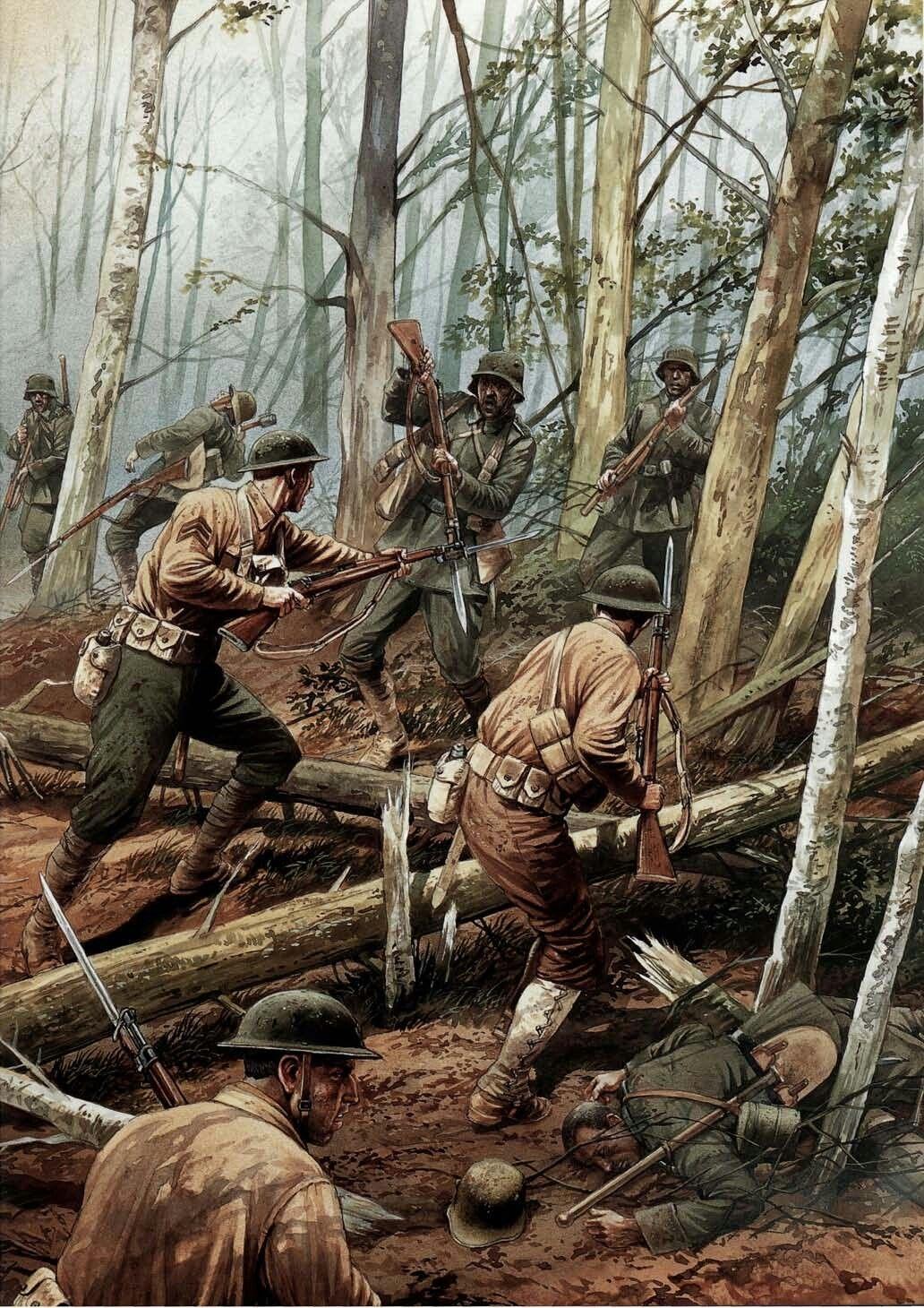 World War I Battle Of Belleau Wood - Year of Clean Water