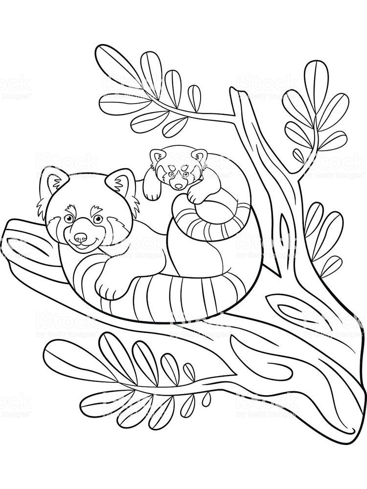 Printable Panda Coloring Pages For Kids Free Coloring