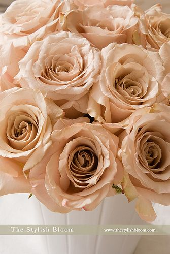 A Champagne Pink Rose Bouquet Is Perfect For A Vintage Look Champagne Wedding Flowers Champagne Wedding Colors Champagne Flowers