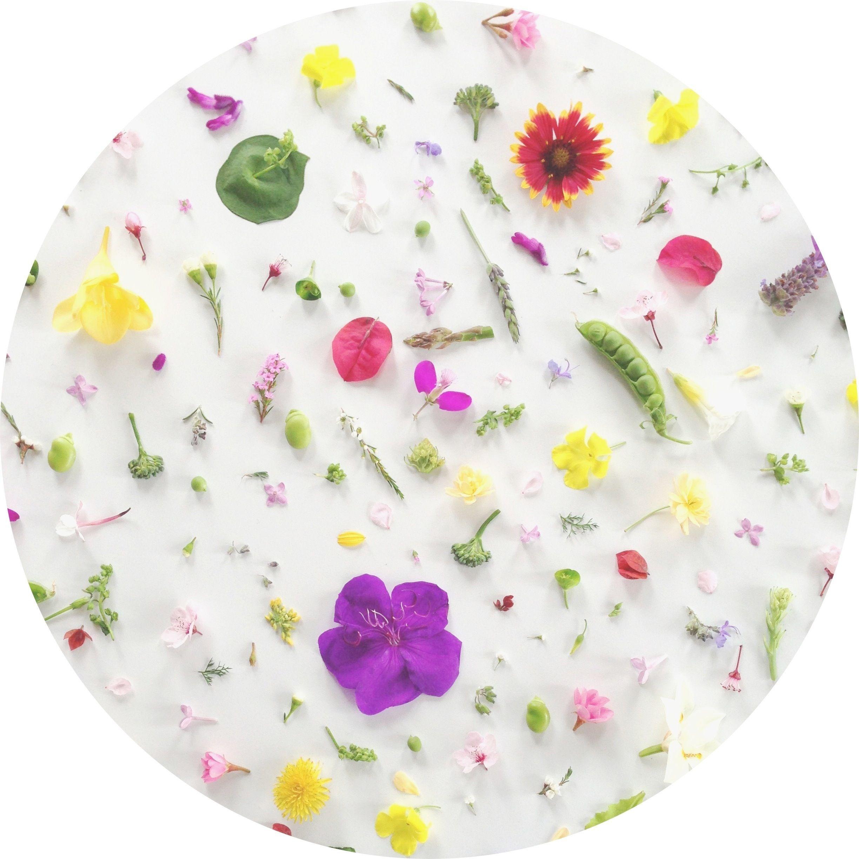 happy spring a desktop wallpaper julies kitchen